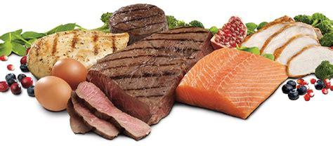 u proteini šta su proteini i kako ih naš organizam vari xplode