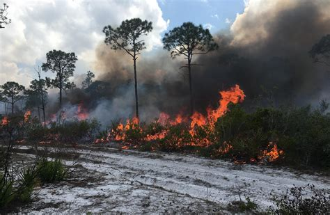 florida wildfires photos