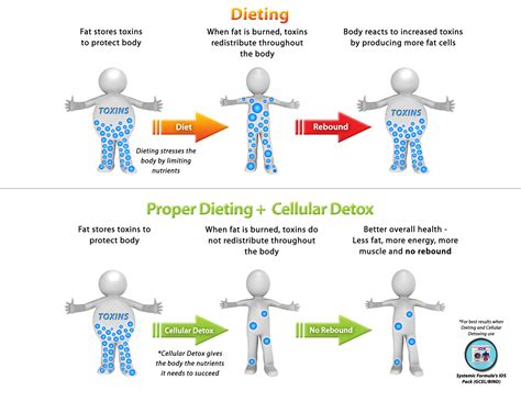 How Should I Use De As A Detox by Dieting And Detox How To Lose Toxic For