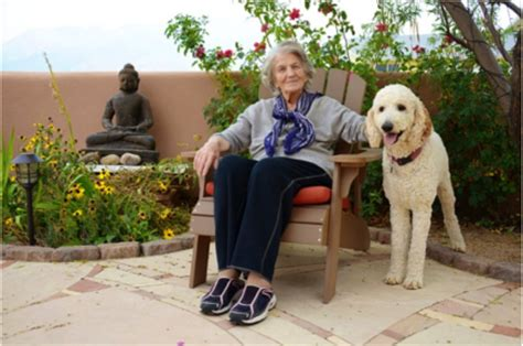 autism therapy dogs therapy dogs helping improve lives of with mental illness
