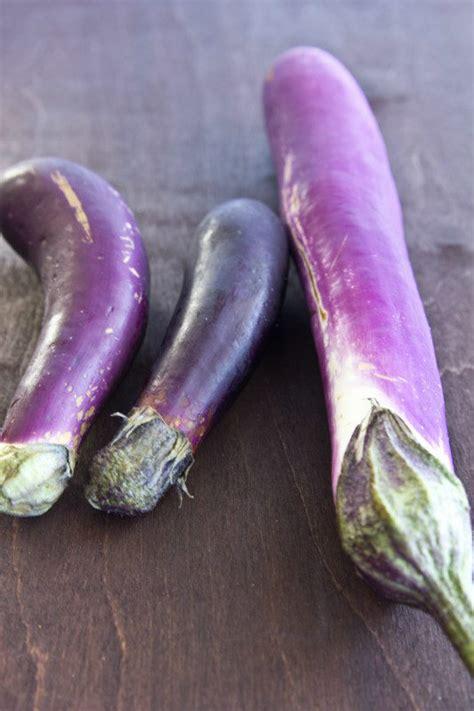 japanese eggplants   cookbook