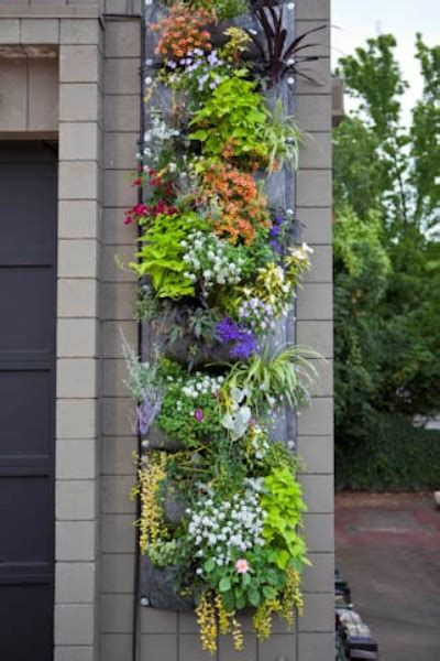 inspiration for a vertical garden with root pouch home