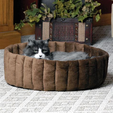 amazon cat bed amazon com k h manufacturing lazy cup large tan mocha 20