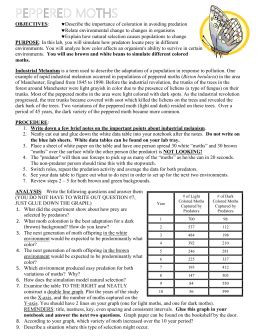 Peppered Moth Simulation Worksheet Answers by Peppered Moth Simulation