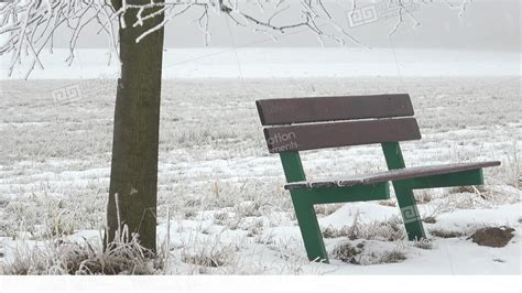 bench winter bench in the snow in winter landscape foggy winter scene