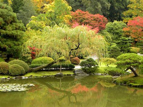 garden seattle panoramio photo of seattle japanese garden