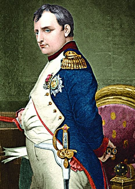 biography of napoleon bonaparte in bengali napoleon bonaparte the court of history