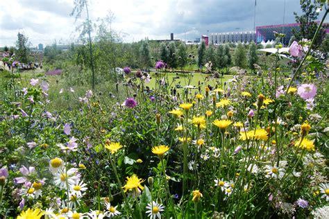 Wildflower Garden Ideas Top 28 Wildflower Garden Designs Wildflower Garden Ideas Home Design Ideas Wildflowers Tim
