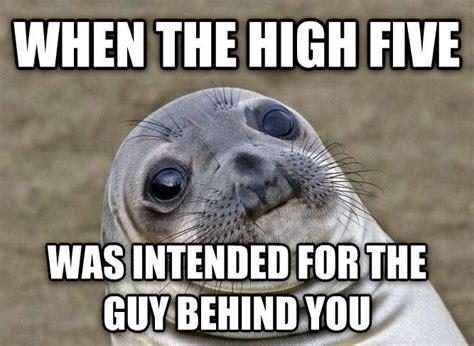Awkward Seal Meme - squeamish seal is the best new meme for any awkward situation