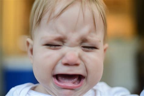 angry baby sad and angry baby pictures popsugar