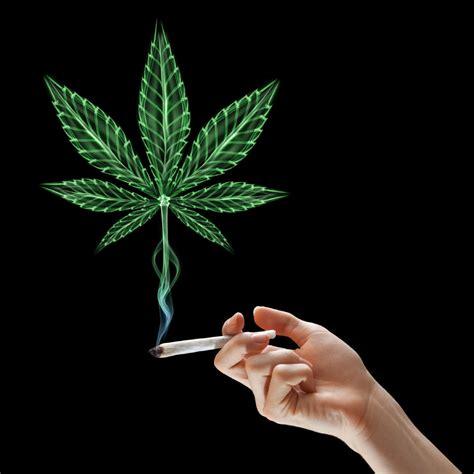 smoking weed in backyard backyard pot smoking threatens to come between neighbours toronto star