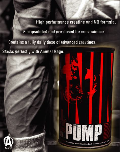 creatine quotes animal by universal nutrition at bodybuilding