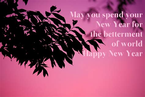 49 best of best new year wishes 2017 sms wishes quotes