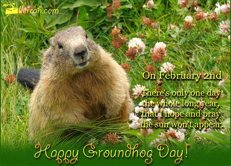 groundhog day quote it cold outside february 2nd