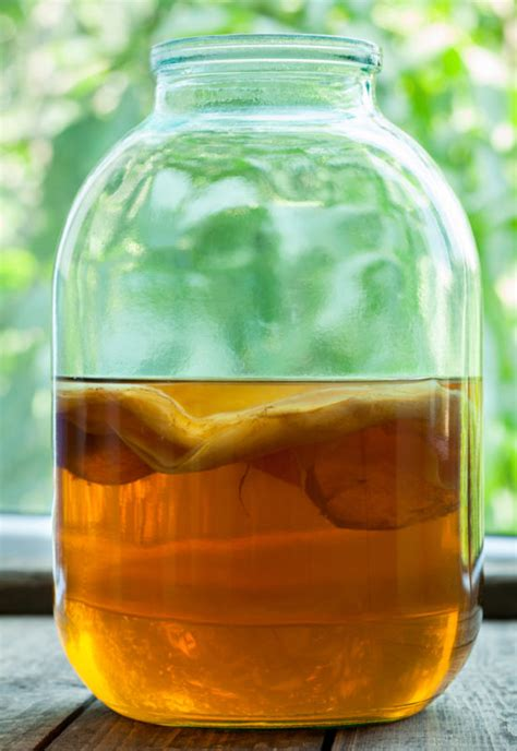 Getting Healthy: Top 5 Ways To Use Kombucha for Stress Relief Healthy Kombucha Scoby