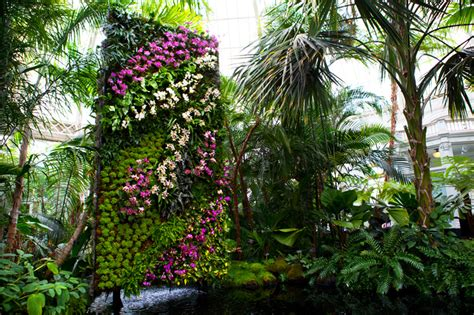 new york botanical garden orchid expo 2012 mur vegetal patrick blanc s gorgeous vertical gardens flank the 10th