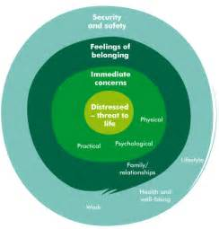 holistic needs assessment and care planning introduction