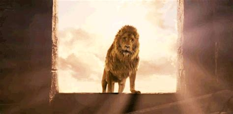 narnia film rækkefølge the magician s nephew chronicles of narnia 6 by c s lewis