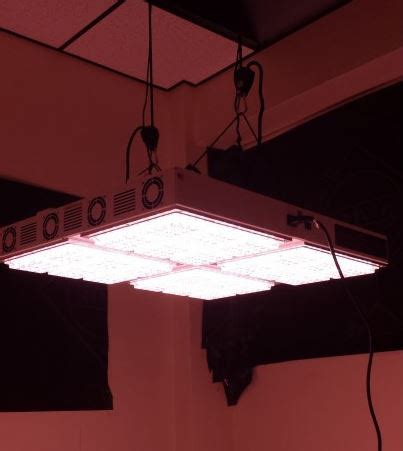 apache led grow lights apache tech at600 white and red led grow light review
