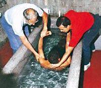 vasche di lourdes el agua de lourdes