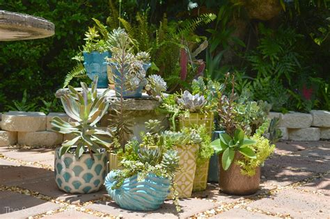 succulents planters the succulent artist unique succulent and cacti planters