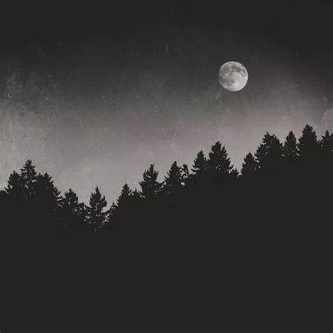 imagenes tumblr en negro viste de negro tumblr