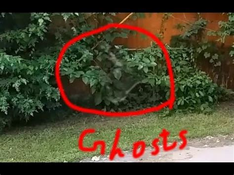best ghost best ghost sighting december 2014