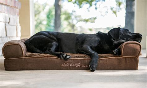 large dog couch eddie bauer large couch dog bed groupon goods