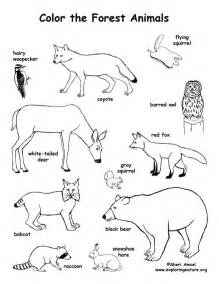 coloring book lyrics blockhead pointer animal coloring pages exprimartdesign