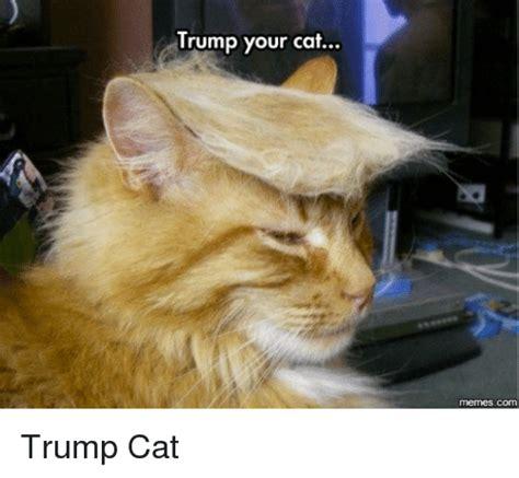 Dank Cat Memes - trump your cat trump cat dank meme on sizzle