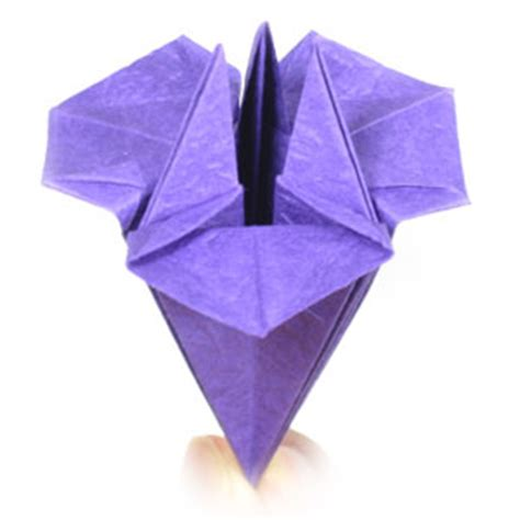 Iris Origami - how to make a simple origami iris flower page 18