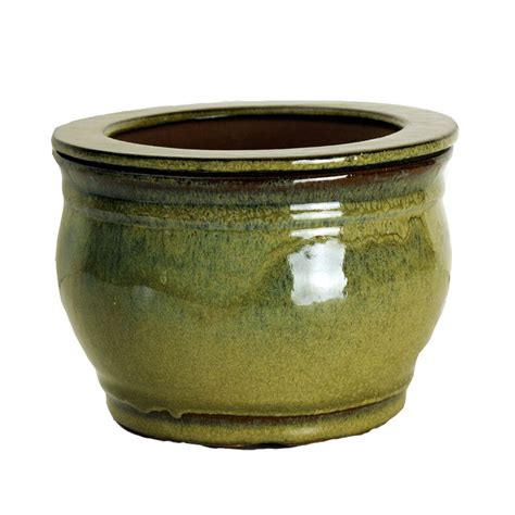 self water pot 8 quot moss round self watering pot