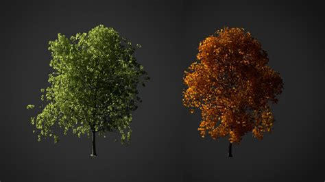 tutorial blender tree how to create a realistic tree in blender 3d part 1