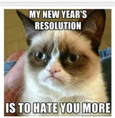 Grumpy Cat New Years Meme - israel palestine in the news part iv page 163