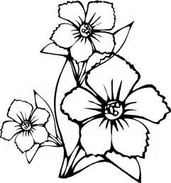 free coloring pages of hawaiian flowers tropical flower drawings cliparts co