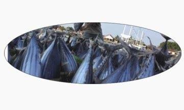 Produk Ukm Abon Ayam Anisa abon ikan tuna