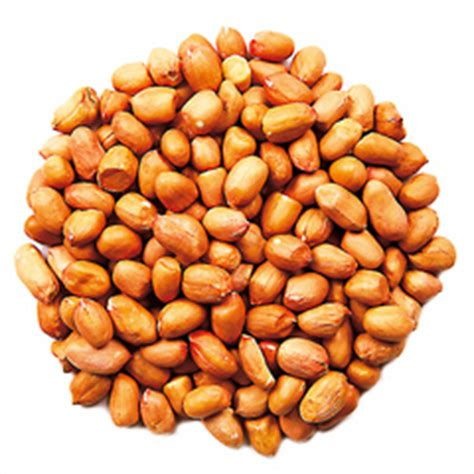 peanuts for wild birds food4wildbirds