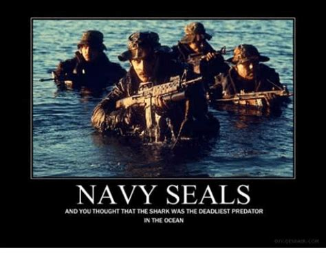 Navy Seal Meme - navy seals and you thought that theshark was the deadliest predator in the ocean navy meme on