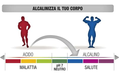 acido basico alimentazione la dieta alcalinizzante e l equilibrio acido base