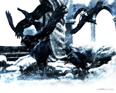 The Murder Of Crows by A Murder Of Crows 2 By Zilla774 On Deviantart