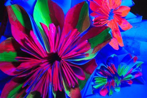 Daily Glow By Natisha Shop origami neon flowers by natashahallett on deviantart