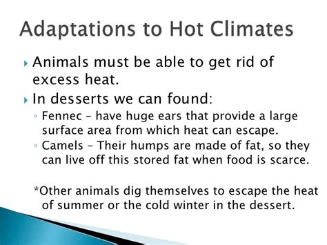 Get Rid Of The Summer Cake Look Newsvine Fashion 3 by Plant And Animal Adaptation