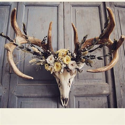 deer decor best 20 deer skull ideas on mounts