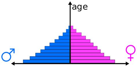 the american class structure in an age of growing inequality books file population pyramid exle svg