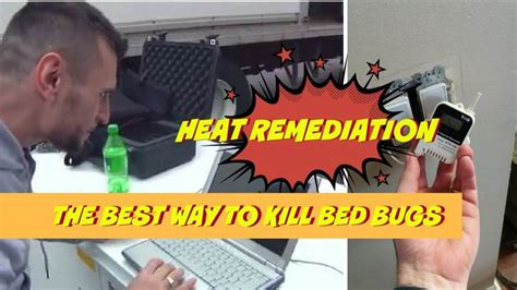Does Diatomaceous Earth Detox Mercury by 25 Best Ideas About Killing Bed Bugs On What