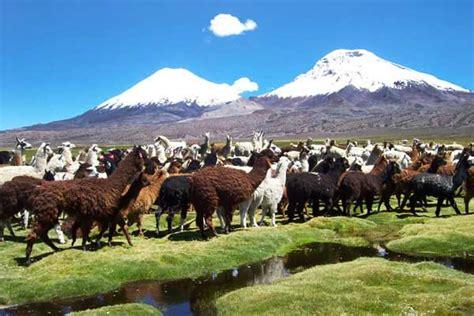 imagenes de paisajes zona norte de chile imagenes de paisajes zona norte de chile
