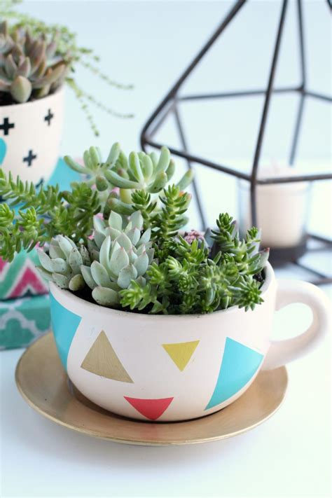 diy succulents 15 beautiful ways to decorate with succulents