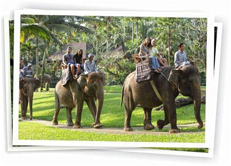 Elephant Gajah Display elephant safari ride tour bali kartika tours