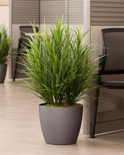 buy artificial grass floor plant at petals