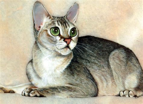 painting cat whiskers your painting on paintings ukraine and
